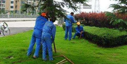 惠州清洁园林绿化养护服务方案